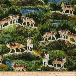 Robert Kaufman Bringing Nature Home Wolves Nature