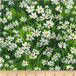 Michael Miller Florals Meadow Daisy Green