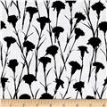 Finespun Dianthus Black