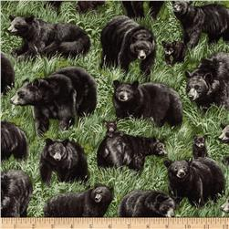 American Wildlife Bears Multi
