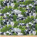 Animal Adventure Happy Cows Multi
