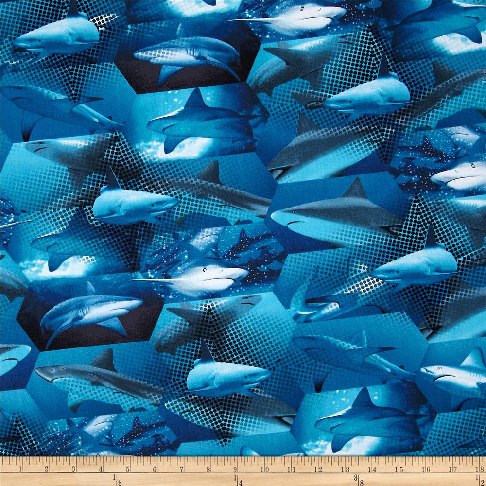 Kanvas Ocean Avenue Shark Blue