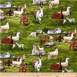 Farm Animals Llama Green