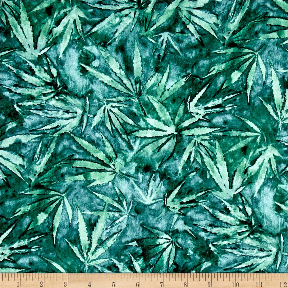Cannabis Teal