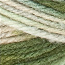 Red Heart Super Saver Camo Yarn 991 Desert Camo