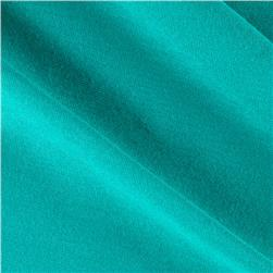 Rayon Spandex Jersey Knit Teal