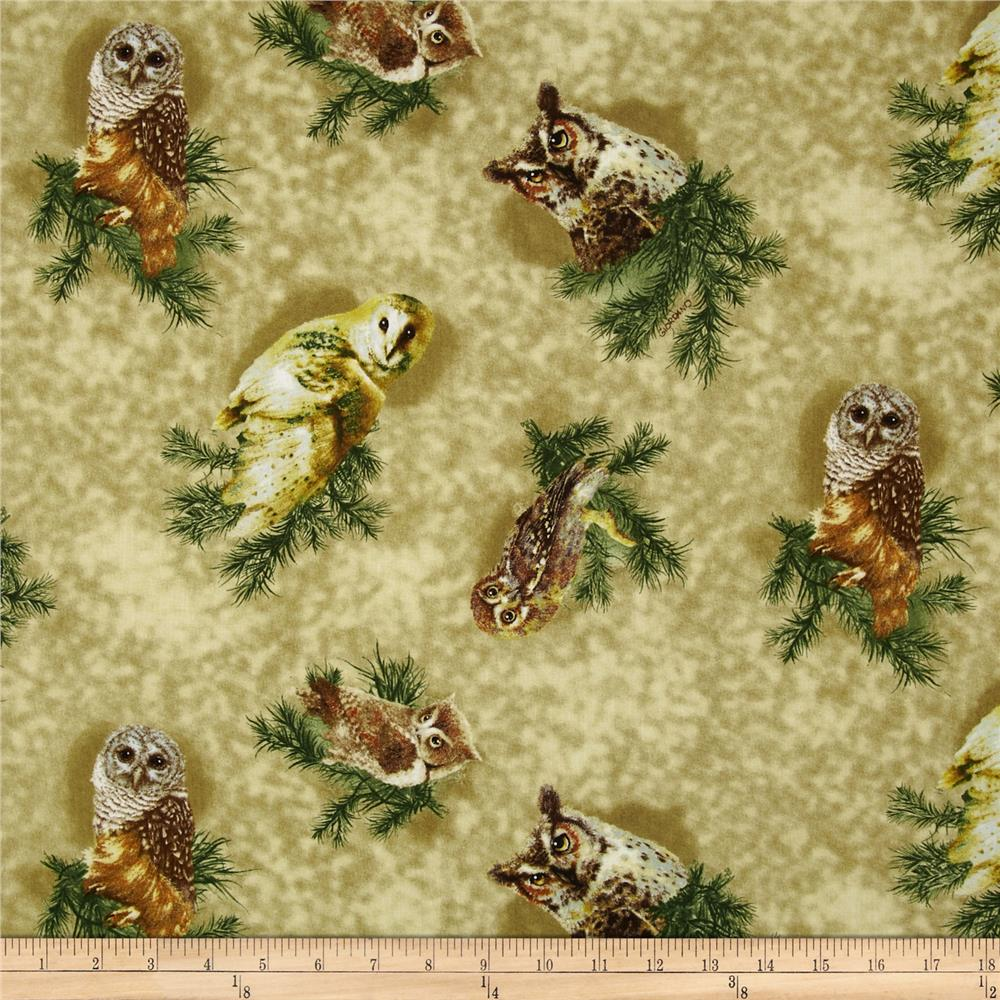 Owls of Wonder Tossed Owls Olive