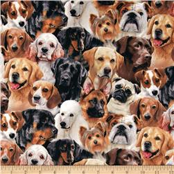 Dog Breeds Packed Dogs Black Fabric