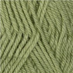 Patons Canadiana Yarn (10230) Cherished Green