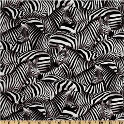 African Inspirations Zebras White/Black