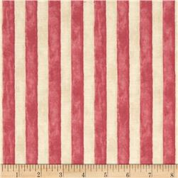 Seaside Village Cabana Stripe Deep Pink