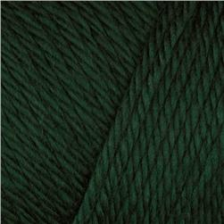 Caron Simply Soft Yarn 6oz (9760) Pine