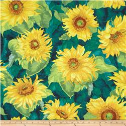 Slice of Sunshine Giant Sunflowers Dark Blue