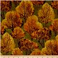 Quail Trees Orange