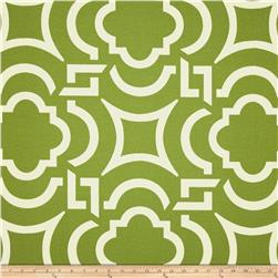 Richloom Solarium Outdoor Carmody Kiwi Home Decor Fabric