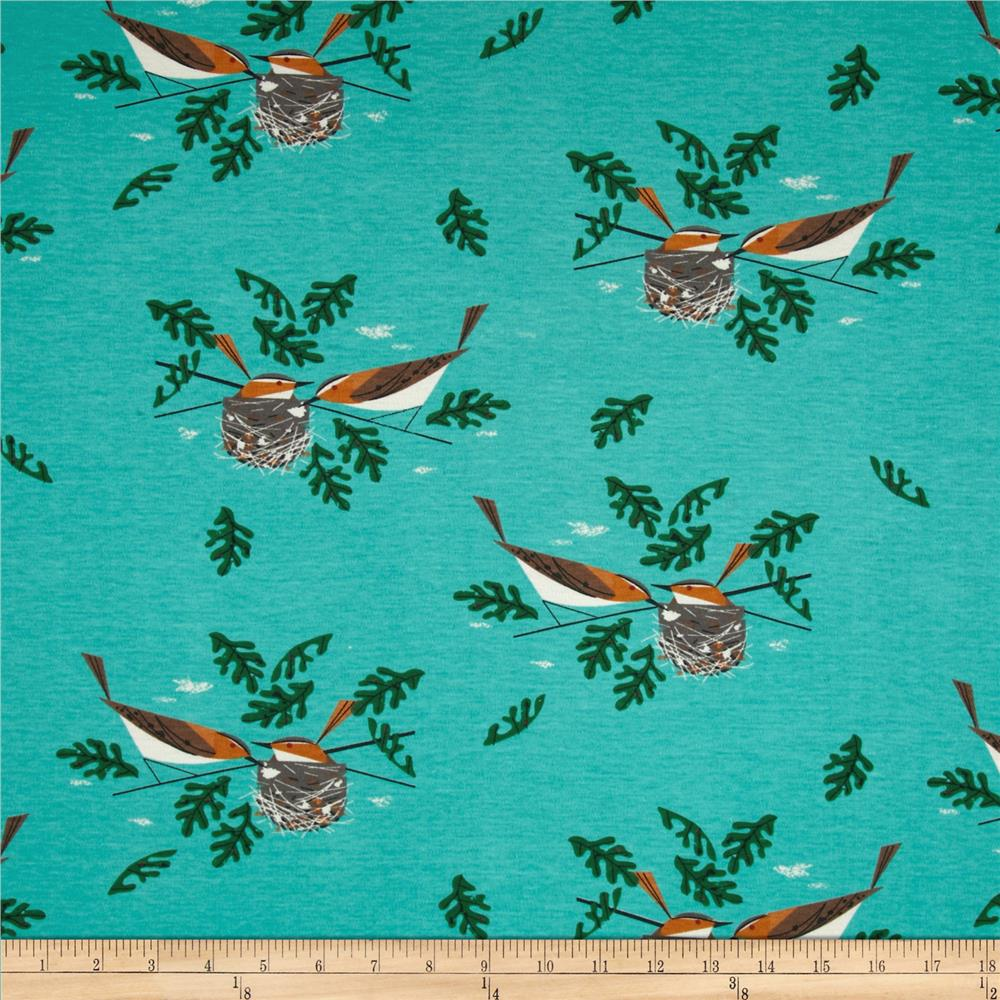 Birch Organic Interlock Knit Charley Harper Red Eye Vireo Aqua