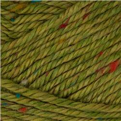 Lion Brand Heartland Yarn Everglades Tweed