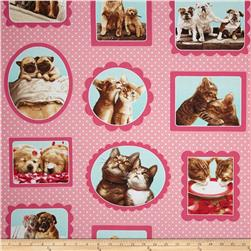 Robert Kaufman Hugs & Kisses Dogs & Cats Pink