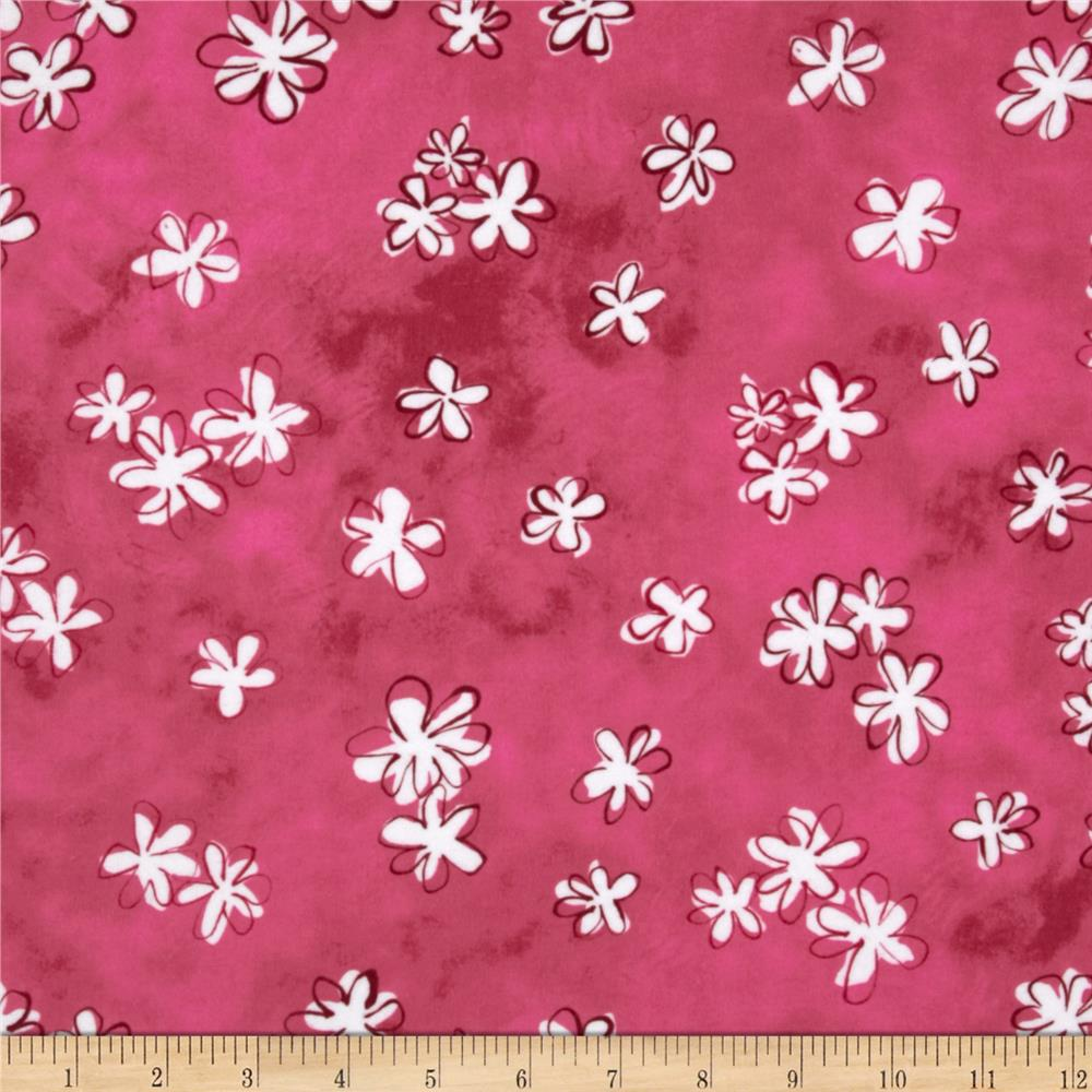 Daisy Love Flannel Daisies Small Garden