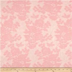 Dainty Lace Paris Pink