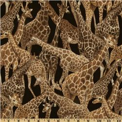 Living Wonders Giraffes Black/Brown Fabric