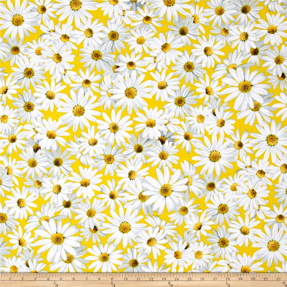 Kanvas Bloom With A View Daisy Dreamers Yellow
