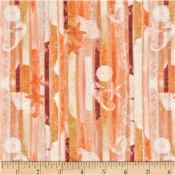 Tropical Dreams Shell Stripe Coral