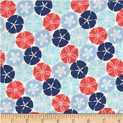 Splash Sand Dollar Nautical