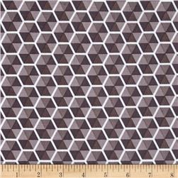 Riley Blake Desert Bloom Hexies Gray