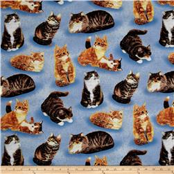 Sew Curious Cats All Over Blue
