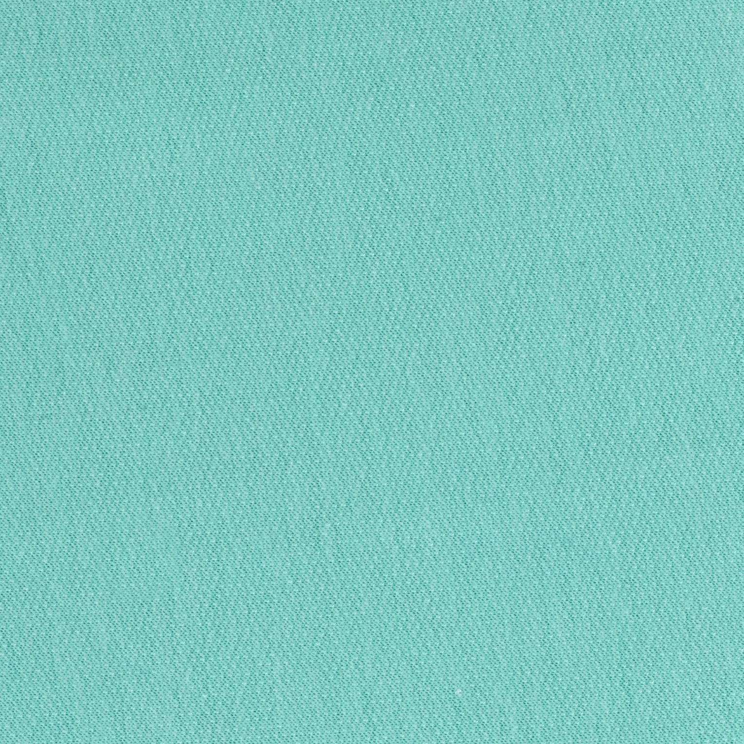French Terry Mint Fabric by Stardom Specialty in USA