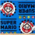 Nintendo Super Mario Hey Mario! Fleece Blue