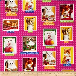 Eat, Drink & Be Funny Cat Blocks Pink