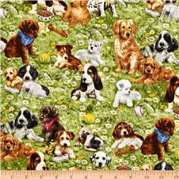 Greg Giordano Novelties Puppies Green
