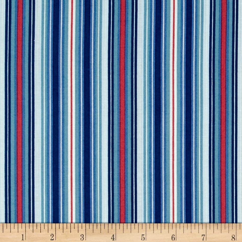 American Bouquet Stripes Blue Multi