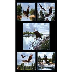 Majestic Bald Eagle 24 In. Panel Black