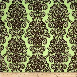 Minky Damask Sage/Brown