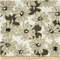 Paintbox Shadows Big Daisy Taupe