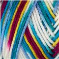 Bernat Super Value Ombre Yarn Pizzaz