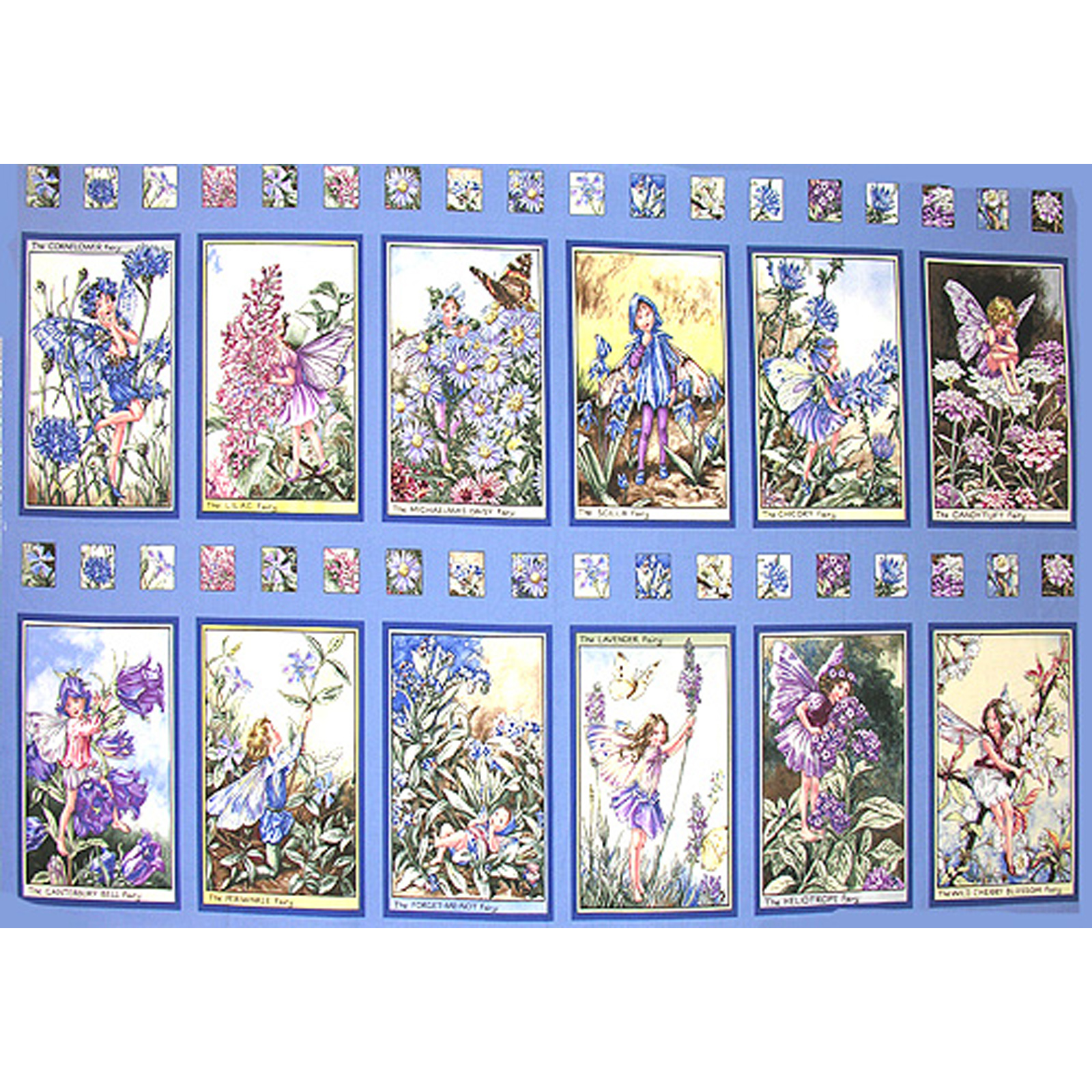 Michael Miller Flower Fairies Panel Periwinkle