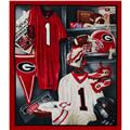 Collegiate Fleece Locker Room Panel University  Of Georgia Red/Grey