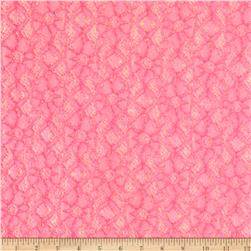 Novelty Lace Hot Pink/White