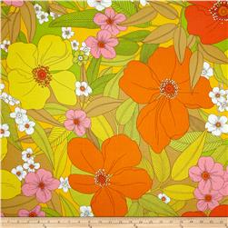 Tropix Paola Large Flower Citrus