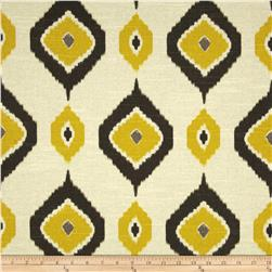 Swavelle/Mill Creek Ashuna Slub Gold Rush Fabric