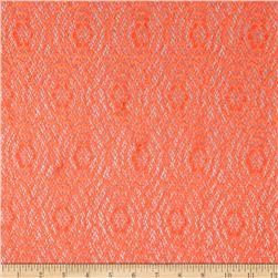 Argentella Stretch Lace Orange