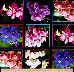 Digital Garden Orchids Printed Block 36 In. Panel Black