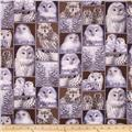 Kanvas The Great North Wilderness Flannel Feathered Owlet Silver Grey