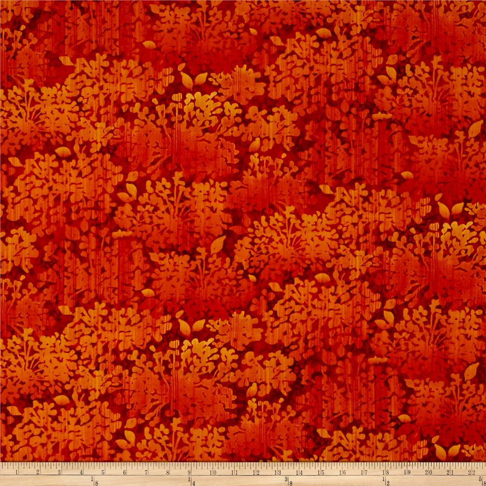 Nature Studies Foliage Orange