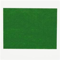 "Friendly Felt 9"" x 12"" Craft Cut Apple Green"