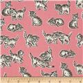 Robert Kaufman Whiskers & Tails Kitty Cats Blush